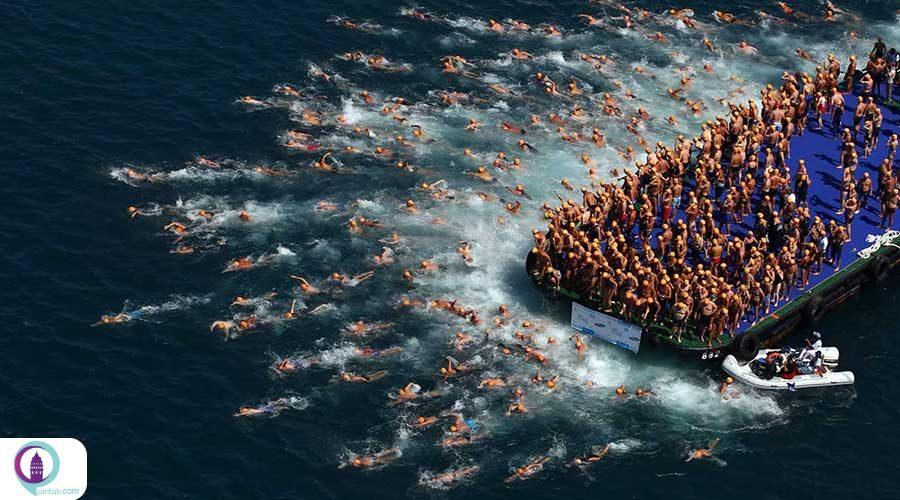 مسابقه دو هزار شناگر در تنگه بسفر