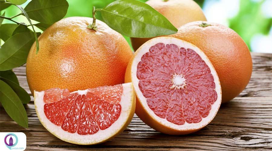 صادرات مرکبات و میوه ترکیه