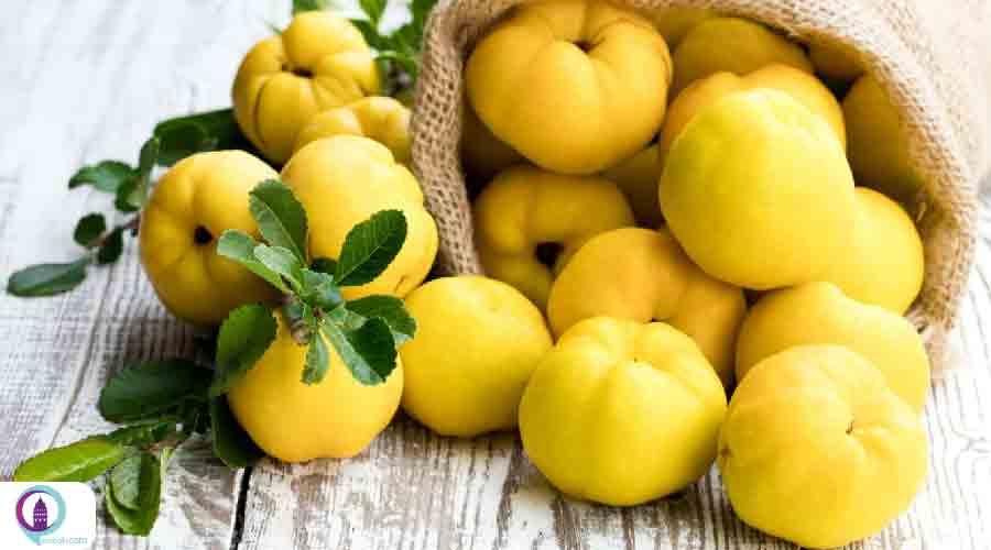 میوه به ترکیه