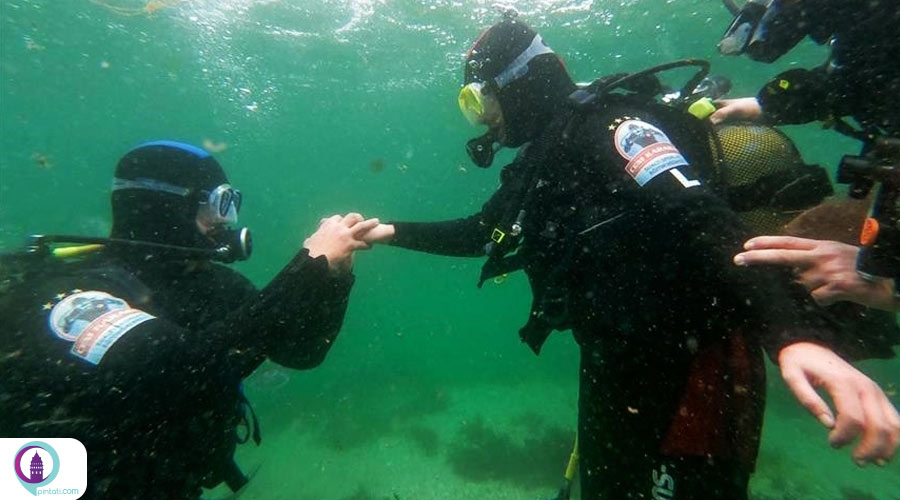 پیشنهاد ازدواج در اعماق سرد دریا
