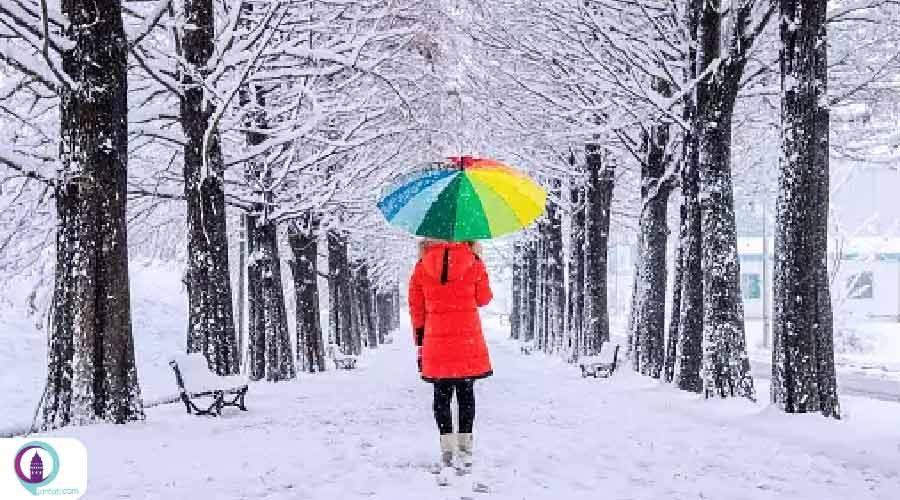 بارش برف در استانبول ادامه دارد!