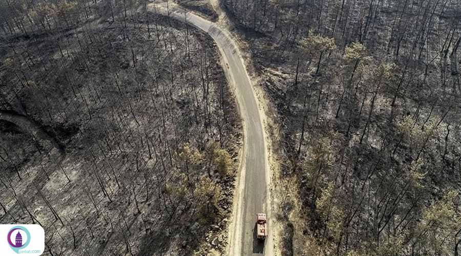 مناطق آتشسوزی در ترکیه «فاجعه زده» اعلام شد