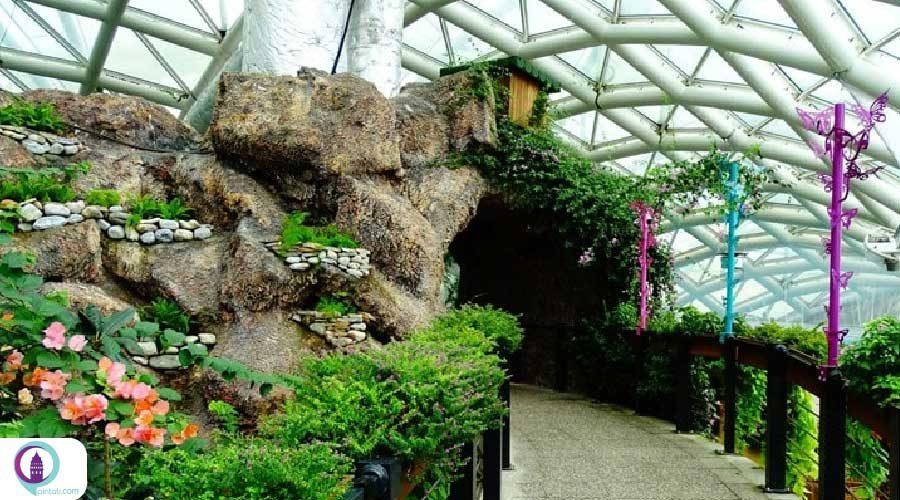 باغچه جدید باغ پروانههای گرمسیری قونیه ترکیه
