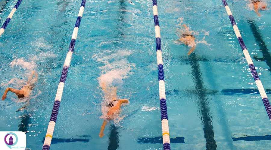 ملیپوش ترکیه قهرمان شنای اروپا